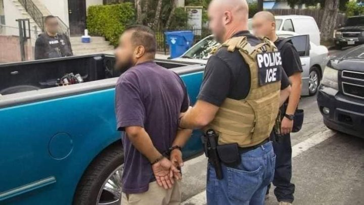 El paisano fue detenido este domingo en Los Ángeles, California